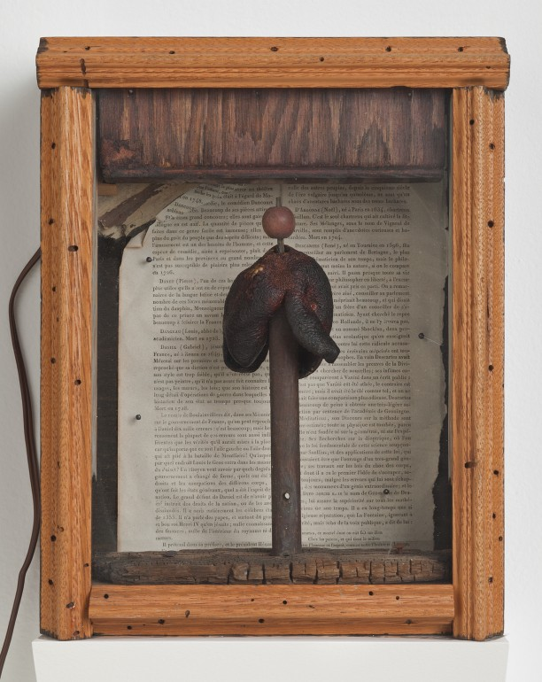 Untitled (Toadstool on wood cylinder)