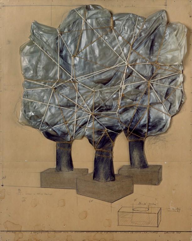 3 Arbres (Chataigner) Empaquetes (Projet pour la Fondation Maeght-St. Paul de Vence)