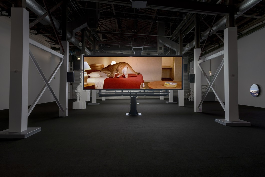 Doug Aitken: Electric Earth Installation View 37