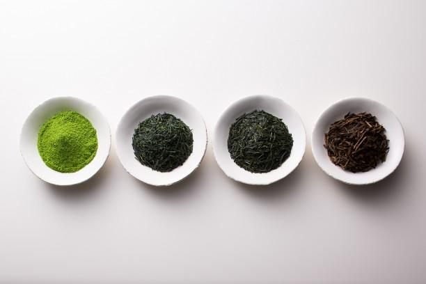 Tortoise General Store: Tea Tasting with Ippodo Tea