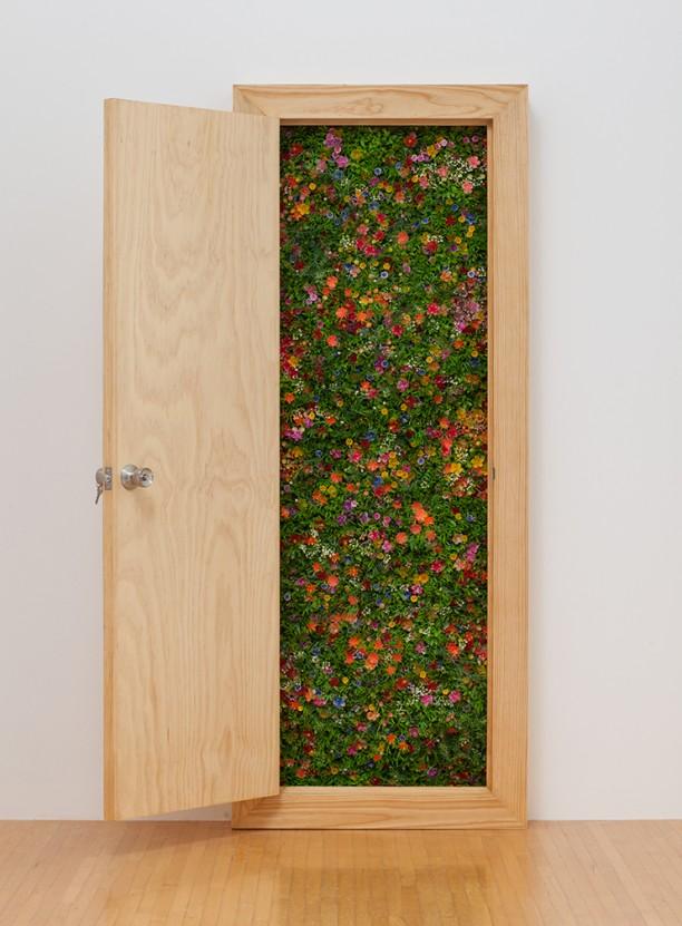 Untitled (Puerta II)