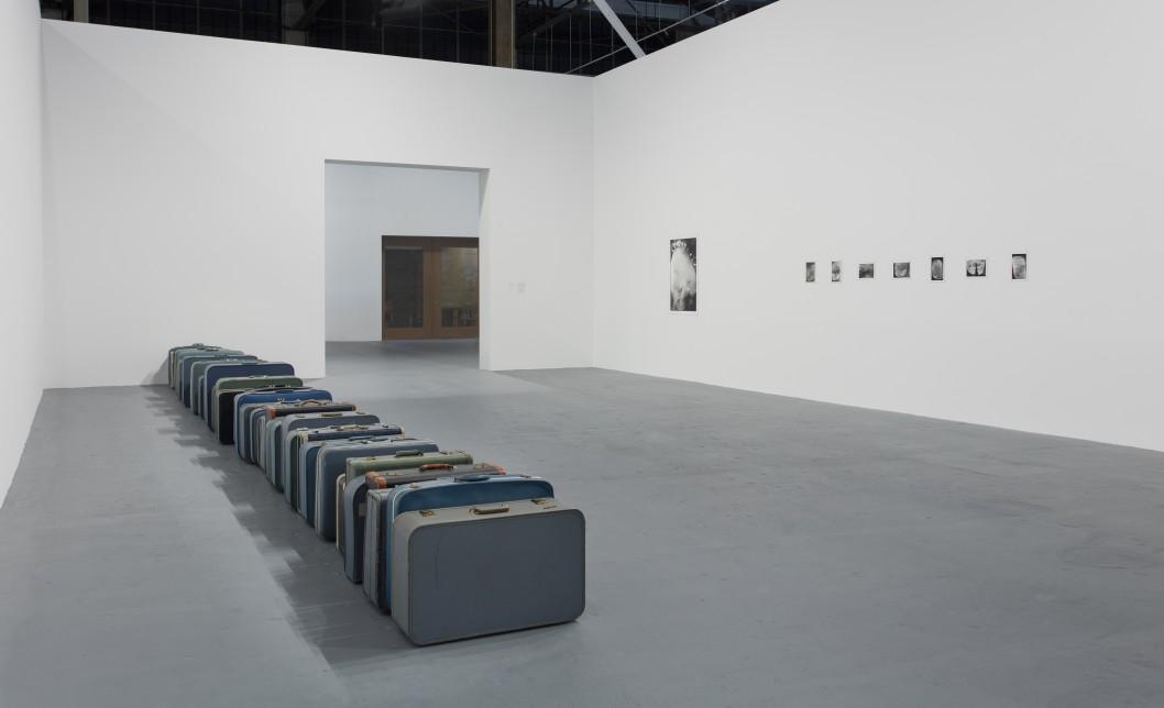 Zoe Leonard Installation View 04