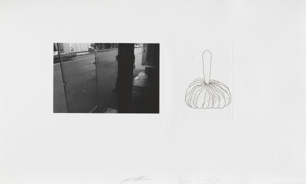 Untitled (photograph taken thru glass and etching)