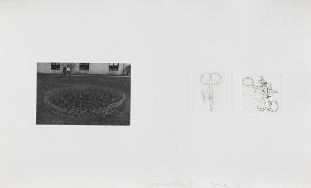 Untitled (small garden and two pairs of scissors)