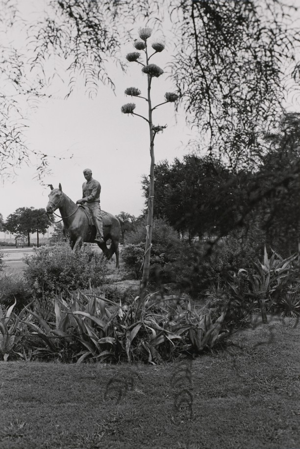 Will Rogers. Fort Worth, Texas