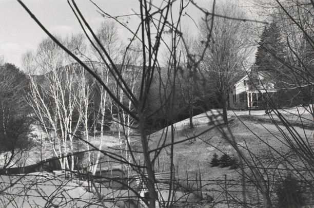Untitled, Hudson Valley, New York (House with Fences and Branches)