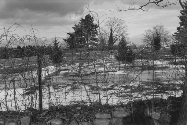 Untitled, Suffern, New Jersey (Wire Fence with Trees and Barn)
