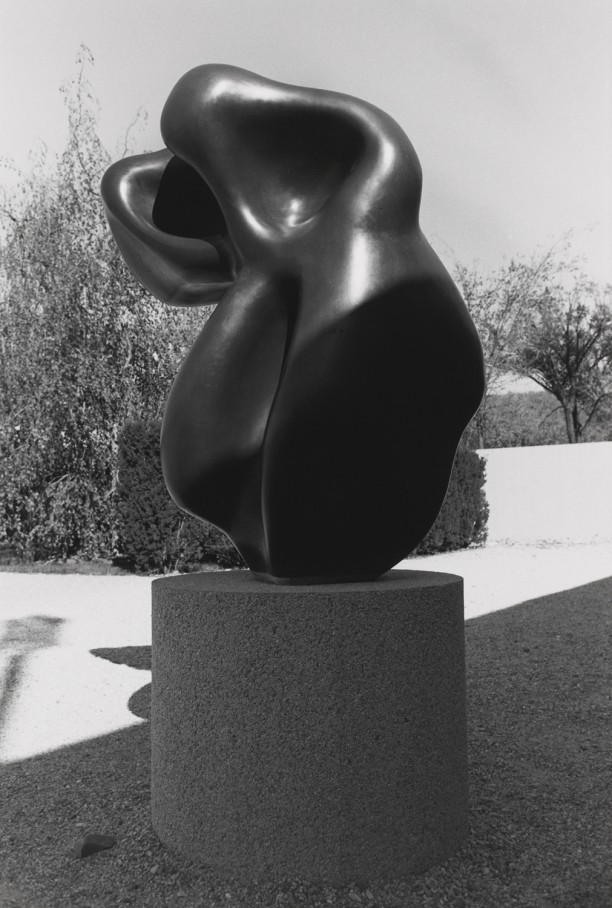 Untitled (Close-Up of Smooth Black Sculpture)