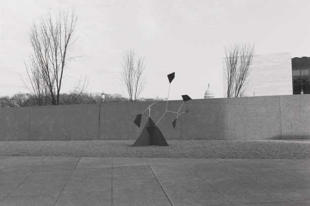 Untitled, Sculpture of Kites and Capital Building