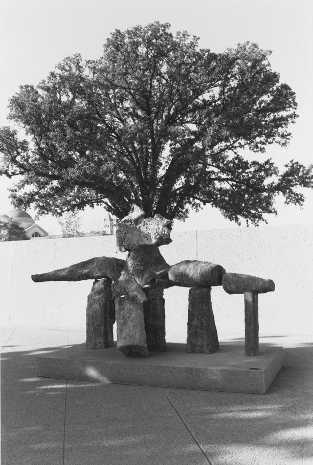 Untitled (Sculpture Rock Formation with Tree)