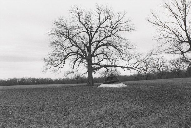 Untitled from Shiloh National Military Park, Tenessee (cannon ball pyramid and tree)
