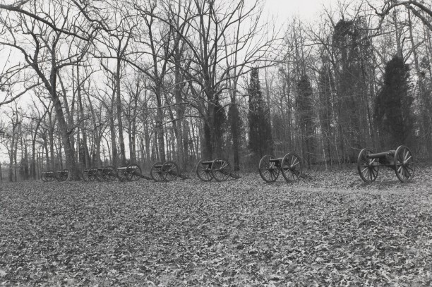 Untitled from Shiloh National Military Park, Tenessee (row of cannons)