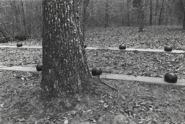 Untitled from Shiloh National Military Park, Tenessee (random balls)