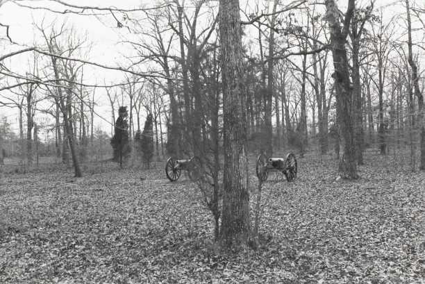 Untitled from Shiloh National Military Park, Tenessee (twin cannons)