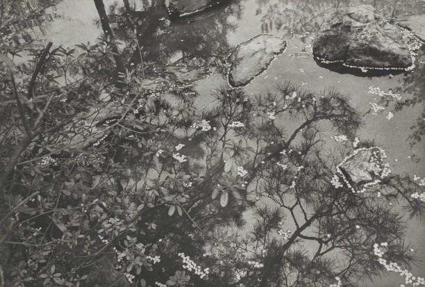 Kyoto (stones in water)