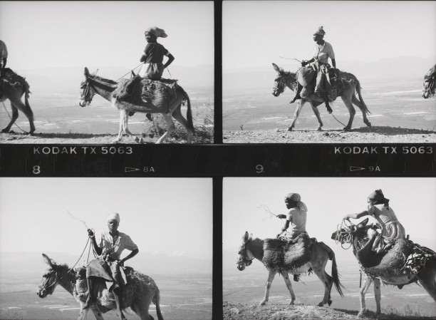 Series of 4: Women on Mules