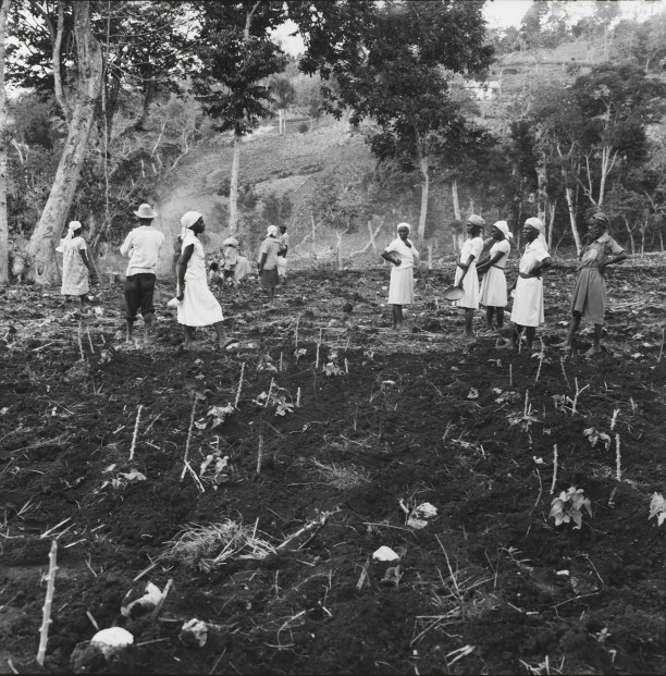 Women wait to plant a field above Jacmal