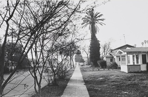 Untitled (Street Scene with Trees and House)