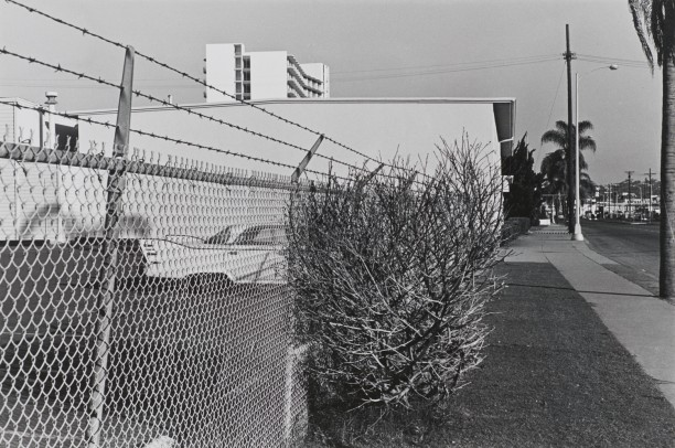 Untitled (Car, Fence, Bush)