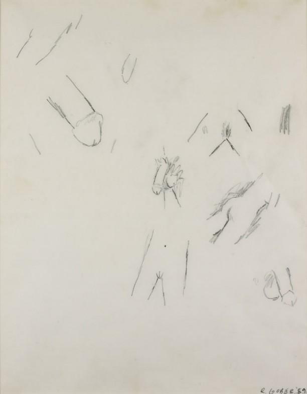 Genital Drawing