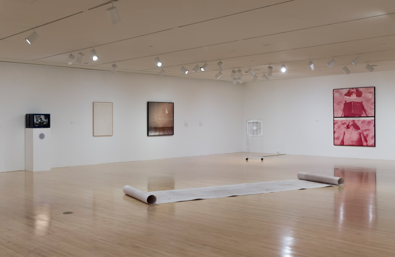 Installation view of Evidence: Selections from the Collection by Jeff McLane.